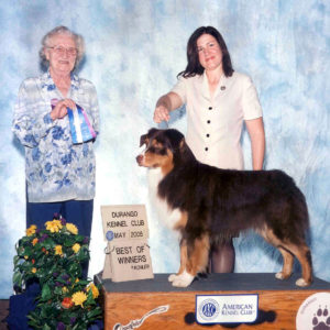 Flyer going Winners Dog and Best of Winners at Durango KC 05.20.2005