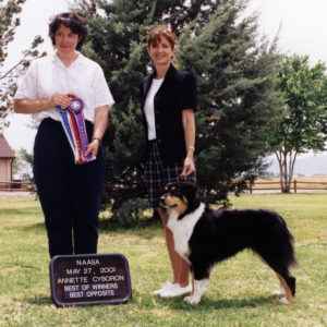 Aster winning Altered Winners Bitch, Altered Best of Winners, Altered Best Opposite Sex under ASCA Senior Breeder Judge Annette Cyboron, 05.27.2001