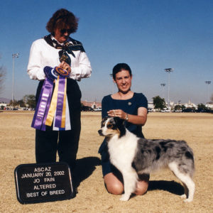 Echo winning Altered Winners Bitch, Altered Best of Winners, Altered Best of Breed under Judge Jo Fain, 01.20.2002