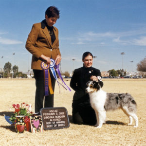Echo winning Altered Winners Bitch, Altered Best of Winners, Altered Best of Breed under Judge Virginia Borduin 02.03.2002