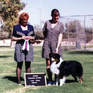 Symon winning Reserve Winners Dog at OPASC under ASCA Breeder Judge Lois Odom, September 21, 1996. Photo Credit Kristin Rush