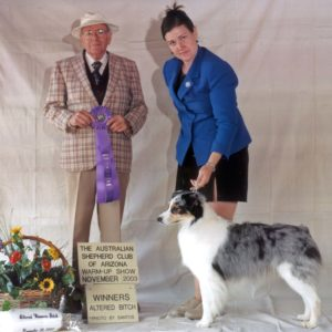 Echo winning Altered Winners Bitch at the ASCAZ Silver Specialty Warm-up show under judge Bruce Voran, 11.29.2003