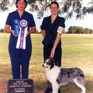Echo winning Altered Reserve Winners Bitch under ASCA Breeder Judge Annette Cyboron, 11.24.2001