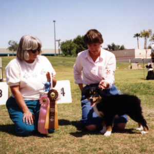 Phoebe winning Best of Breed Puppy under ASCA Senior Breeder Judge Sharon Herbert, at ASCAZ, Phoenix AZ, April 5, 1992
