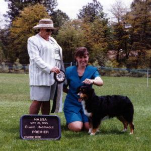 Phoebe winning Premier Champion under Senior Breeder Judge Elaine Hartnagle, at NAASA May Days, Payson AZ May 27, 1995