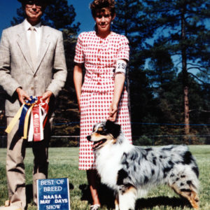 HOF ASCA/AKC CH. Chrisdava's Silver Sands, CD, STDds