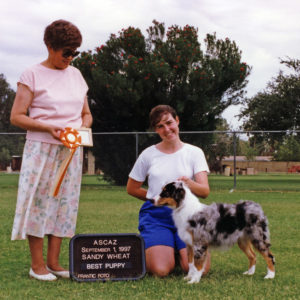 Zoe winning Best of Breed Puppy under Judge Sandy Wheat at ASCAZ, September 1, 1997. Photo Credit Kristin Rush