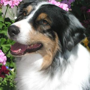Zoe in 2004