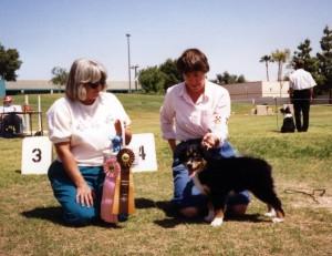 Phoebe winning Best of Breed Puppy under ASCA Senior Breeder Judge Sharon Herbert, at ASCAZ, Phoenix AZ, 5 Apr 1992