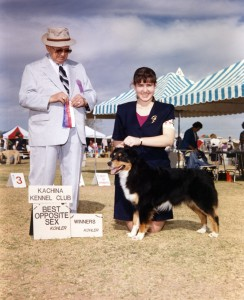 Phoebe winning Winners Bitch and Best of Winners for a 5 point major Kachina Kennel Club, Goodyear AZ, 6 Mar 1994