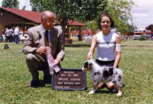 Zoe winning Best of Breed Puppy under Judge Bruce Voran at NAASA, May 24, 1997.