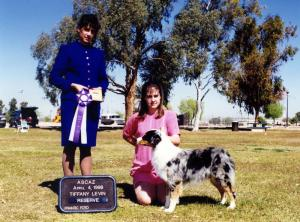 Zoe winning Reserve Winners Bitch under ASCA Breeder Judge Tiffany Levin at ASCAZ, April 4, 1998.
