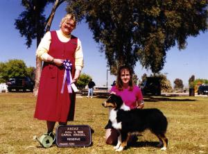 Cody going Reserve Winners Dog at ASCAZ under Judge Carol Kriesel, April 5, 1998.