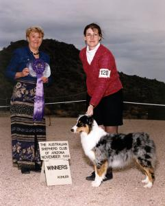 Zoe winning Winners Bitch for a 5 point major under ASCA Senior Breeder Judge Janet Goin at the ASCAZ Silver Specialty in Phoenix, AZ, November 1998