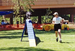 Cody on the Dog Walk in his first agility trial, Mile High Agility, Prescott, AZ  May 13, 2001