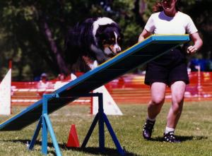 Cody on the Teeter. May 13, 2001