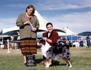 Zoe winning Reserve Winners Bitch under Judge Stephanie Hedgepath at Greater Sierra Vista KC, Tucson, AZ, November 18, 2001.