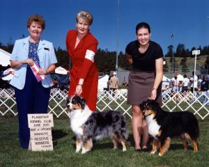 Zoe winning Winners Bitch, Best Opposite Sex and Best of Winners, and Clover winning Reserve Winners BItch at Flagstaff KC, Flagstaff AZ, June 2001.