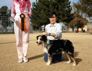 Abbi winning Best of Breed Puppy under ASCA Breeder Judge Teena Meadors at ASCAZ, Mesa AZ, 21 Jan 1989
