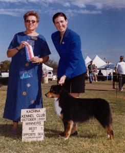 Clover winning Winners Bitch and Best of Breed under Judge Arlene Rubenstein at Kachina KC, Goodyear, AZ October 2001