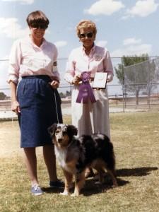 Harley winning Winners Bitch under Judge Jean Malone at OPASC, Marana AZ, 30 May 1988