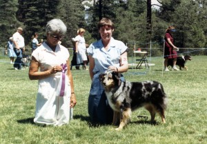 Harley winning Reserve Winners Bitch to Abbi under Judge Marge Cornell at NAASA, Payson AZ, 29 Jul 1988