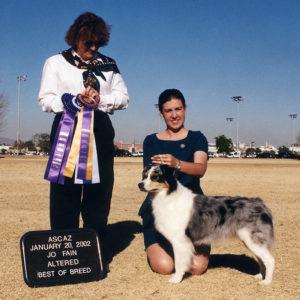 Echo winning Altered Winners Bitch, Altered Best of Winners, Altered Best of Breed under Judge Jo Fain, 01.20.2002