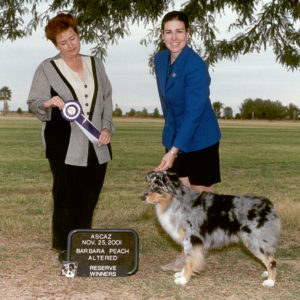 Jazz winning Altered Reserve Winners Dog under Judge Barbara Peach at the ASCAZ Silver Specialty Cool-Down Show, 11.25.2001
