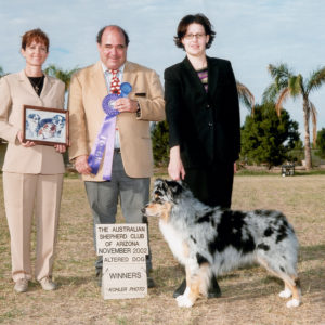 Jazz winning Altered Winners Dog at ASCAZ, November 2002