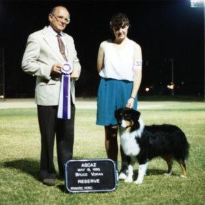 Symon going Reserve Winners Dog at ASCAZ under Judge Bruce Voran, May 19, 1995. Photo Credit Kristin Rush