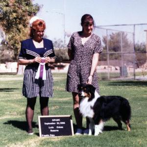 Symon winning Reserve Winners Dog at OPASC under ASCA Breeder Judge Lois Odom, September 21, 1996. Photo Credit Kristin Rush