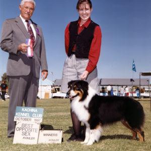 Symon winning Winners Dog, Best of Winners, and Best Opposite Sex at Kachina KC, October 1007. Kohler Photo