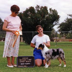 Zoe winning Best of Breed Puppy under Judge Sandy Wheat at ASCAZ, September 1, 1997. Photo Credit Kristin Rush