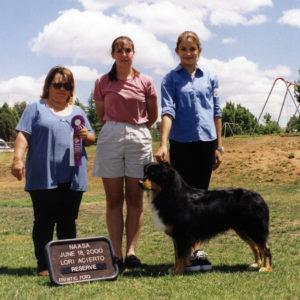 Bowen winning Reserve Winners Dog under ASCA Senior Breeder Judge Lori Acierto at NAASA, June 18, 2000. Photo by Kristin Rush