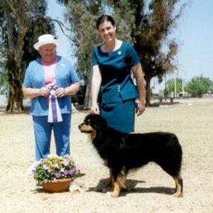 Bowen winning Reserve Winners Dog under Judge Donna Allen at ASCAZ, April 7, 2002
