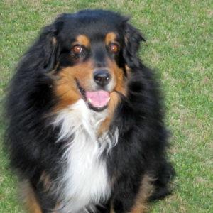 Bowen, age 12. May 31, 2011