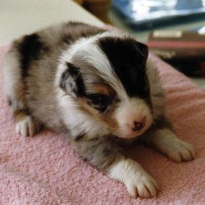 Zoe 4 weeks