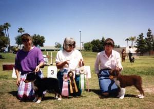 Phoebe winning Best of Breed Puppy, and Jasper winning Best Opposite Sex Puppy under ASCA Senior Breeder Judge Sharon Herbert, at ASCAZ, Phoenix AZ, 5 Apr 1992