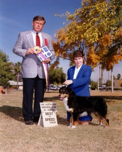 Phoebe winning Best of Breed under Judge Vern Harvey at the ASCAZ Silver Specialty, Nov 1993.
