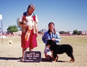 Daisy winning Best of Breed Puppy under Judge Barbara Jorden at ASCAZ, Phoenix AZ, 21 March 1999