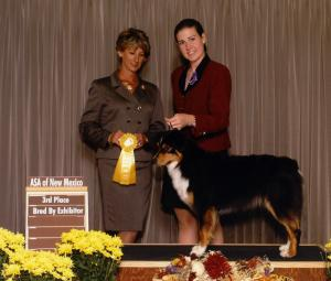 Clover winning 3rd Place in Bred by Exhibitor Bitch at the ASANM nationals preshow under ASCA Senior Breeder Judge Pam Levin, September 2001