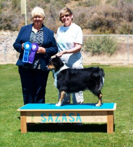 Lola winning Altered  Winners Bitch, Altered Best of Winners at SAZASA, Tucson AZ
