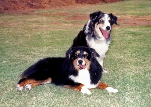 Abbi (aged 14) with her daughter Phoebe (aged 10) in 2002